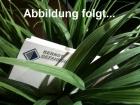 """Schweißband für """"Bionic""""-Gesichtsschirme"""